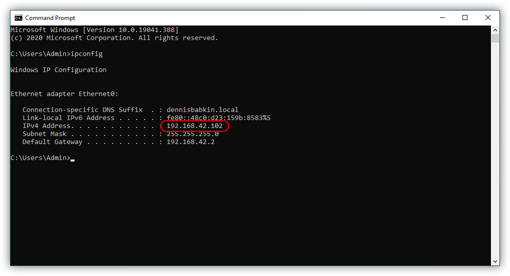 ipconfig on the guest