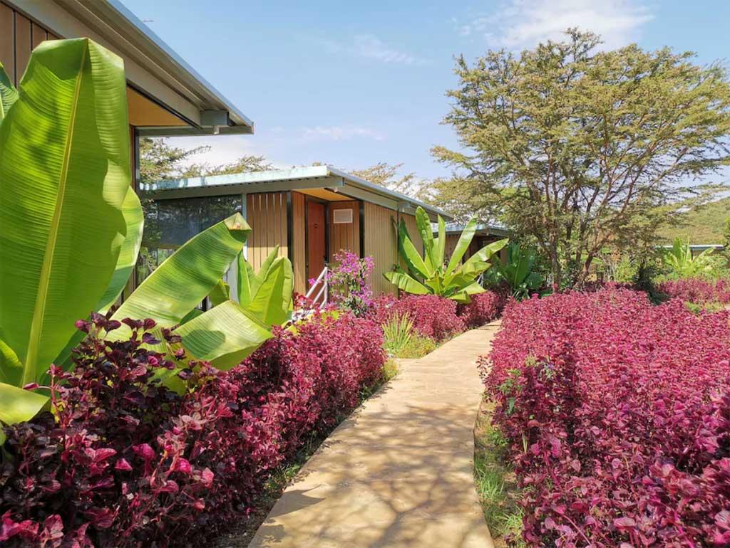 Jambo Mara Safari Lodge - walkway outside